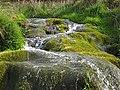 Mossy Cascade - geograph.org.uk - 1283256.jpg