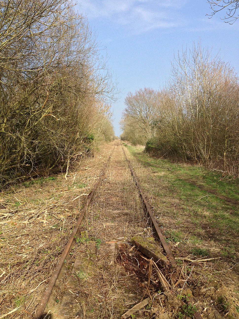 Mothballed Varsity Line eastbound from Salden Wood, 29th March 2014