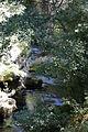 Moulin de la Foux-Gorges de La Vis-20110813.jpg