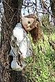 Muñeca colgada como ahorcada.JPG