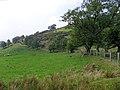 Mynydd Tryfan 2 - geograph.org.uk - 455473.jpg