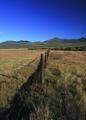 NRCSMT01057 - Montana (4963)(NRCS Photo Gallery).tif