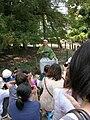 Nagoya Omotenashi Busho-tai Toshiie-20110807.jpg