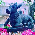 Nandhikesan.jpg