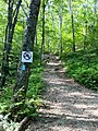Narragansett Trail's south-east trail head on Wintechog Road.jpg