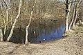 Nationaal Park Kennemerland (39561005560).jpg