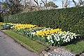 National Botanic Garden,Dublin,Ireland - panoramio (57).jpg