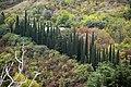 National Botanical Garden of Georgia باغ های بوتانیکال در شهر تفلیس گرجستان 03.jpg