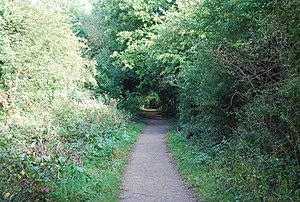 Haysden Country Park -  Cycleway on the Straight Mile