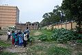 Nature Study - Summer Camp - Nisana Foundation - Bengal Engineering and Science University - Sibpur - Howrah 2013-06-08 9517.JPG