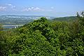 Naturschutzgebiet Altenberg Blick von der Tempelbergwarte.jpg