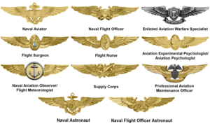 Flight surgeon - Aviation Warfare insignia