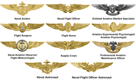 Navy Aviation Warfare Insignia