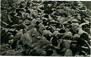 The Holocaust in Poland - Bodies of Jews from the Tarnopol Voivodeship shot face down in an open pit near Złoczów