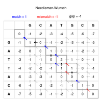 Needleman-Wunsch pairwise sequence alignment.png