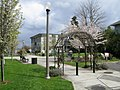 Neighbors Park in Tacoma's Hilltop Neighborhood - Small Park.jpg