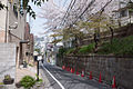 Nekkozaka-Shibuya-01.jpg