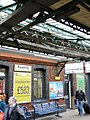 Netting keeps pigeons away from the complex roof of Reading station - geograph.org.uk - 1715259.jpg