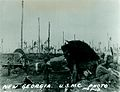New Georgia USMC Photo No. 1-18 (21658019525).jpg