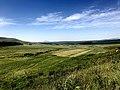 Newcastle Hiking Trail Landscape 02.jpg