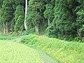 Node, Imizu, Toyama Prefecture 939-0321, Japan - panoramio.jpg