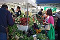 North Sydney Farmers Market.jpg