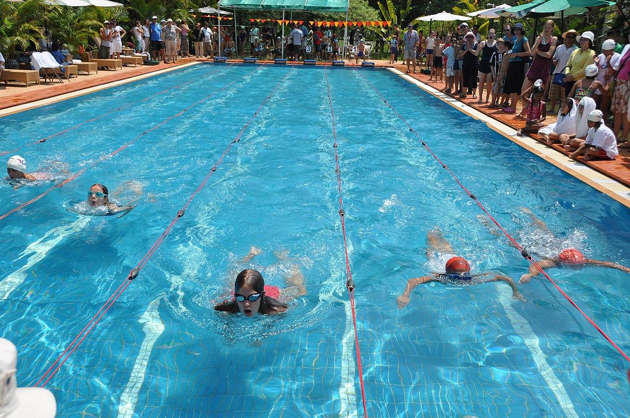 international swim meet florida