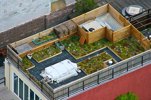 Photo of roof garden in New York City