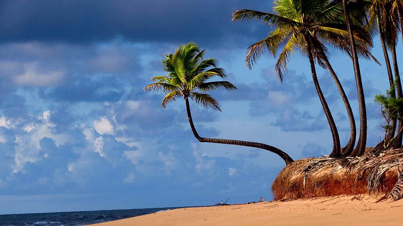 Caribe nordestino