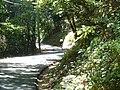 Old La Honda Road crosses San Bruno Mountains between Palo Alto and the coast. 2004. (10322312024).jpg