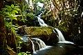 Onomea Falls.jpg