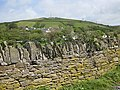 Ora Hill and mast, Croyde - geograph.org.uk - 1325514.jpg