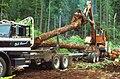 Oregon BLM Forestry 07 (6871707675).jpg