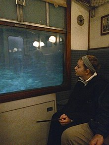 Inside a 1950s-style train compartment. On the left is a window with a projected blue-green image behind it. On the right is a person watching the projection through the window. The compartment lights and sliding door are partially reflected in the glass.