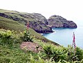 Over Bossiney Haven to Lye Rock - geograph.org.uk - 443242.jpg