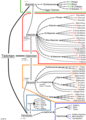 Overview of all known subatomic particles without anti-particles german.png