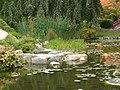 P1060621 vue rapprochee sur amenagement jardin japonais.JPG