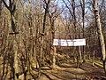 POL Racibórz Park linowy3.JPG