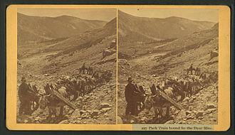 Granite, Colorado - Pack train bound for the Dyer mine