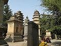 Pagoda Forest7.JPG