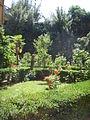 Palazzo guicciardini, giardino 02.JPG