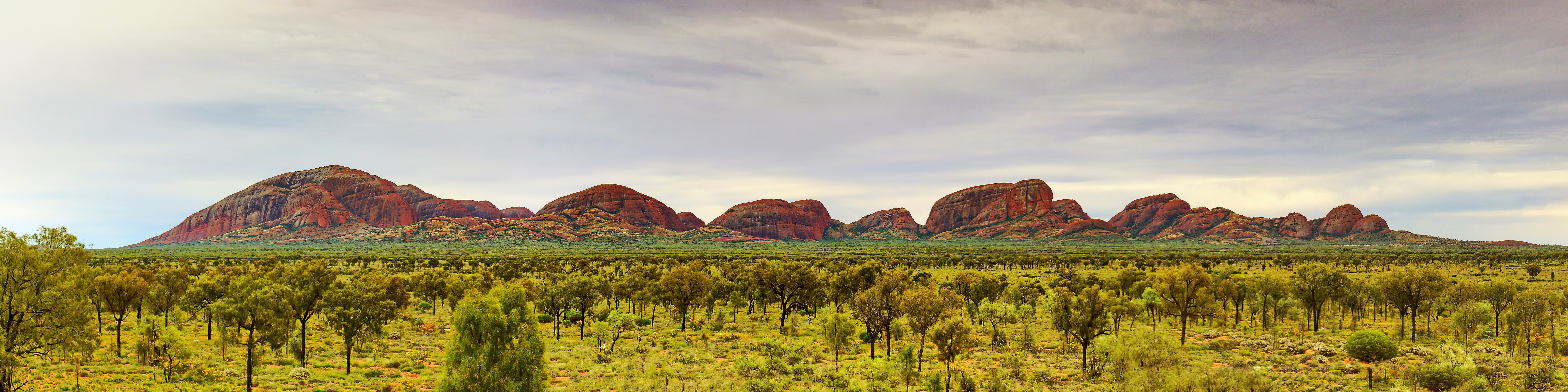 Panoramic view of Kata-Tjuta in the early morning.jpg