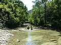 Parco delle Foreste casentinesi - Premilcuore.jpg