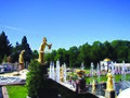 Park of Peterhof.jpg