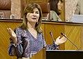 Parlamento de Andalucía IMG 20180510 105815 (42014743161).jpg