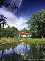 Parque da Cidade de Viseu - Portugal (20628672419).jpg