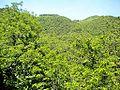 Peraldaccio-paesaggio 03.jpg