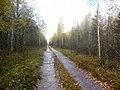 Permskiy r-n, Permskiy kray, Russia - panoramio (761).jpg