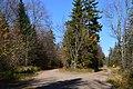 Piercefield, NY, USA - panoramio (54).jpg