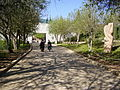PikiWiki Israel 12493 the righteous among the nations avenue in yad vash.jpg